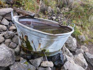 afkoppelen regenwater helpt in een droogtebestendige tuin.